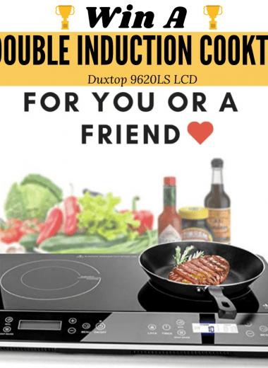 Duxtop double induction cooktop
